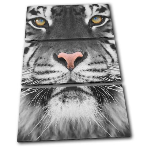 Tiger wildlife Animals - 13-1581(00B)-TR32-PO